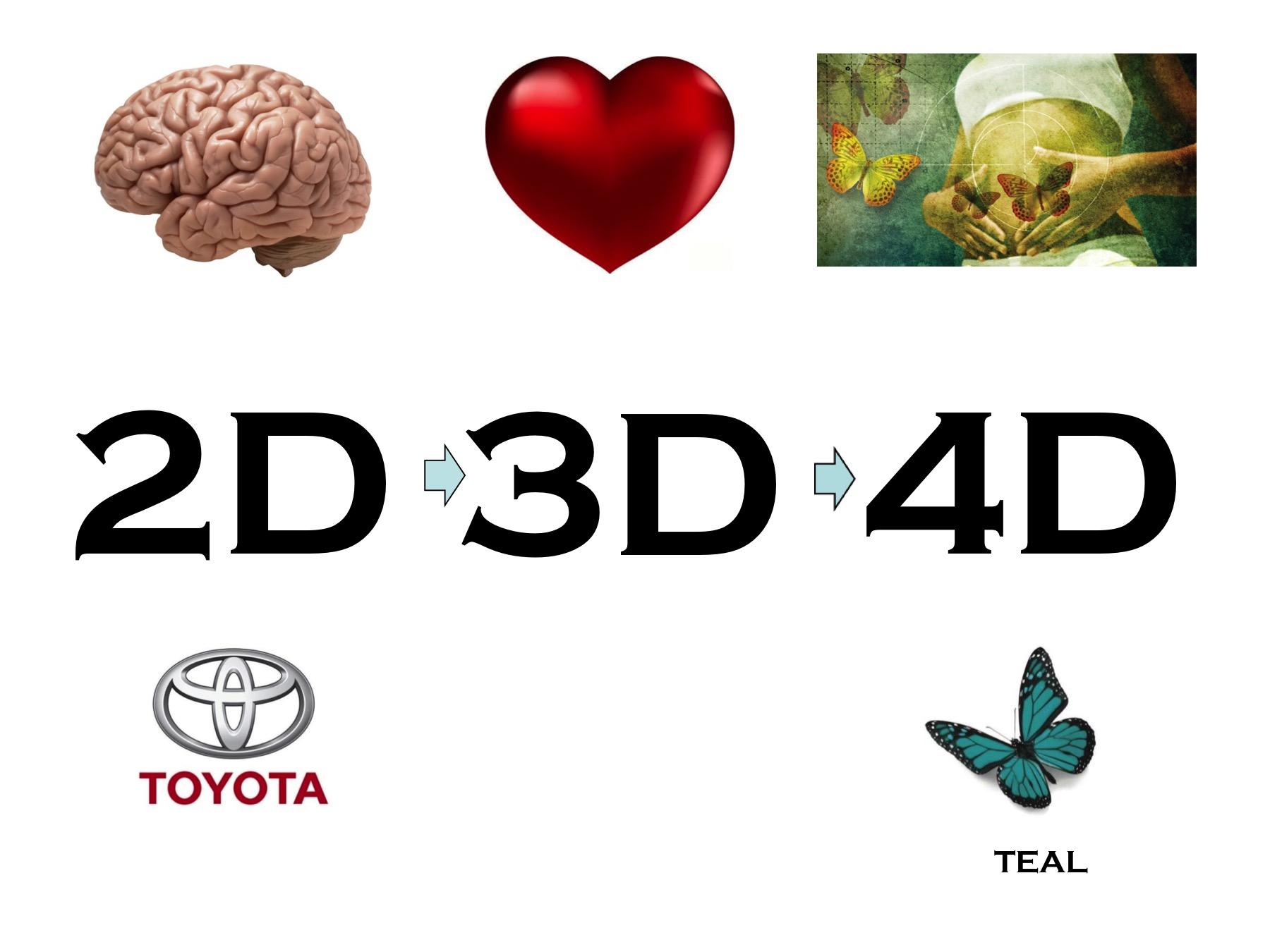 2D-3D-4D Lean slide - respect, connectie, balans - verspilling talent
