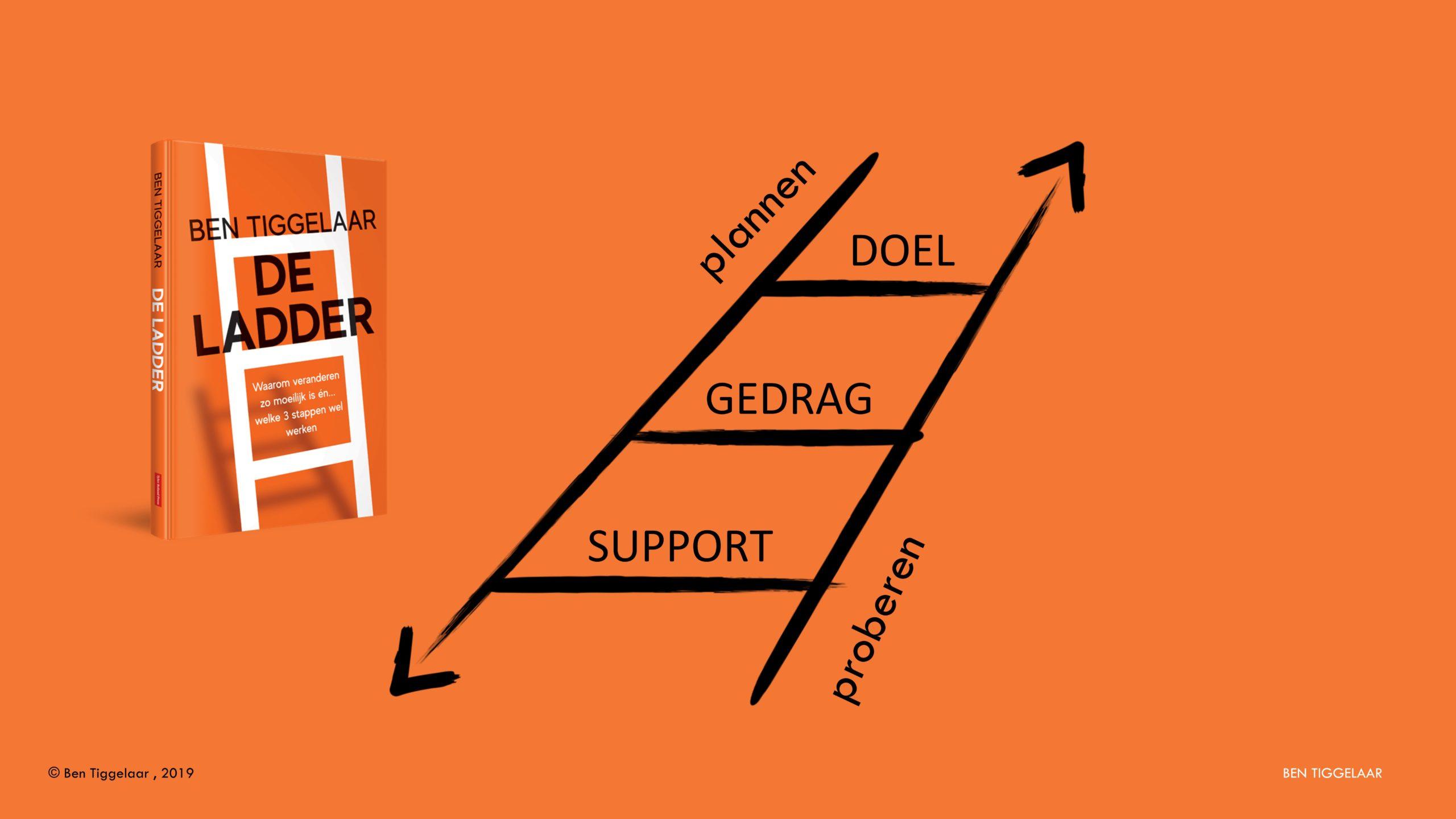 De Ladder model - Tiggelaar